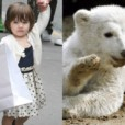people : Suri Cruise et Knut