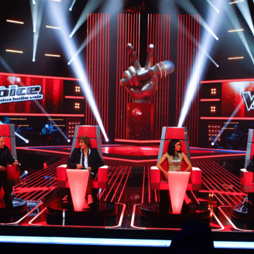 The voice, les 4 coachs