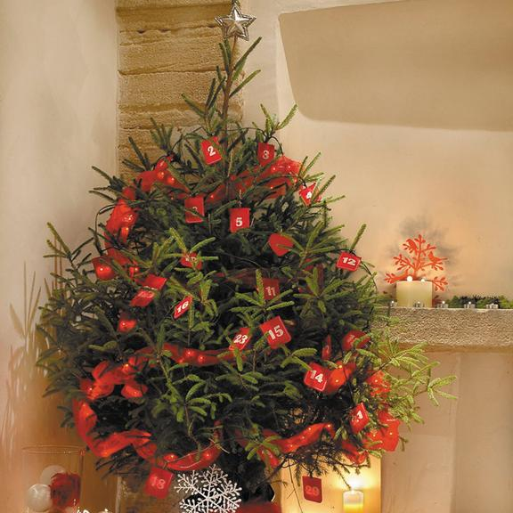 D coration d co de no l bien choisir son sapin de no l news d co d co Decoration sapin de noel