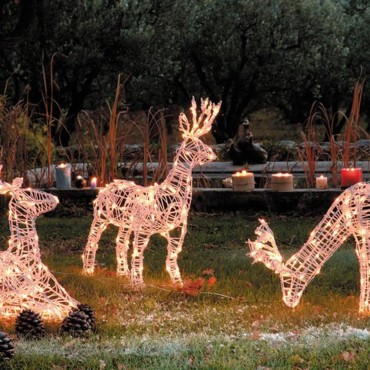 Illumination de Noël : cerf en 3D Blachere