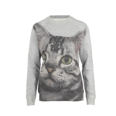 Le sweat chat Asos environ 40 euros