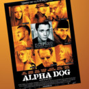 DVD Alpha Dog