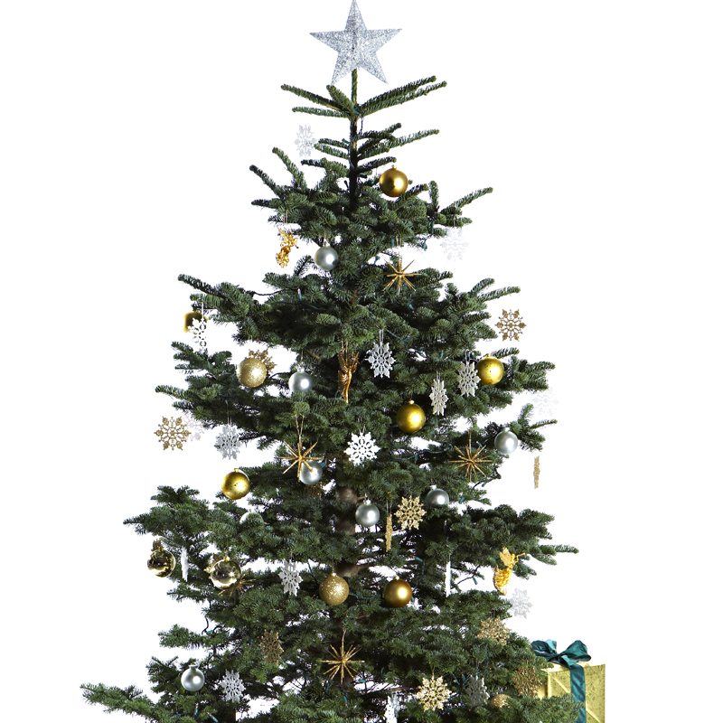 30 sapins de no l pour trouver son style d co un sapin de no l or et argent d co - Decoration de noel sapin ...