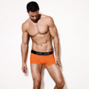 Boxer Color Therapy Hom