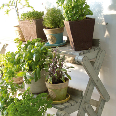 Pot Secrets du Potager