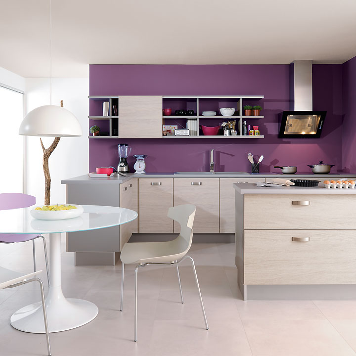 catalogue cuisine d couvrez les nouveaut s 2011 chez. Black Bedroom Furniture Sets. Home Design Ideas