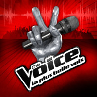 The Voice : que sont-ils devenus ?