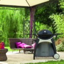 Le barbecue Q220 Black Line Weber