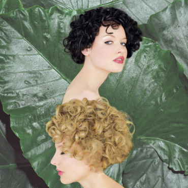 Coupes de cheveux Intercoiffure : 2006, Frantic