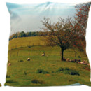 Coussin Maron Bouillie Srie mouton