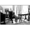 Gerald Ford et son golden retriever, Liberty