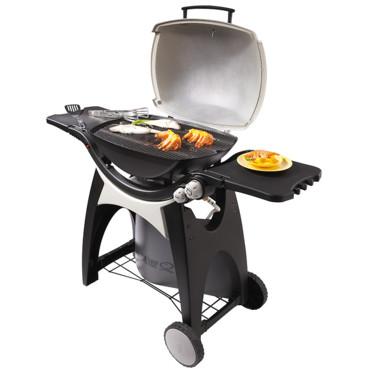 barbecue gaz weber q300 barbecue gaz weber q 300 sur. Black Bedroom Furniture Sets. Home Design Ideas
