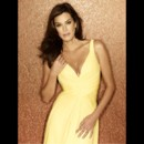 "Teri Hatcher pose pour la saison 5 de ""Desperate Housewives"""