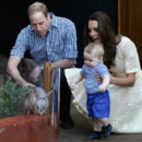 George, Kate Middleton et William au Zoo de Sidney le 21 avril 2014