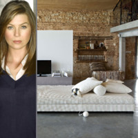 Grey's Anatomy : la déco classe au naturel selon Meredith Grey alias Ellen Pompeo