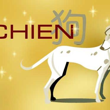 Astrologie chinoise du chien - Copyright © <>