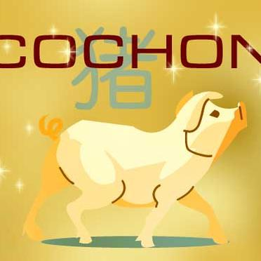 Astrologie chinoise du cochon - Copyright © <>