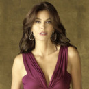 Desperate Housewives : Teri Hatcher