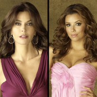 Desperate Housewives saison 6 : elles reviennent en beauté !
