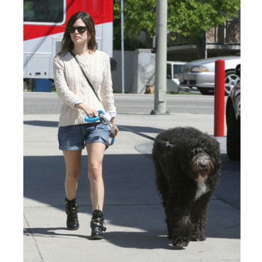 Rachel Bilson et son chien Los Angeles avril 2011